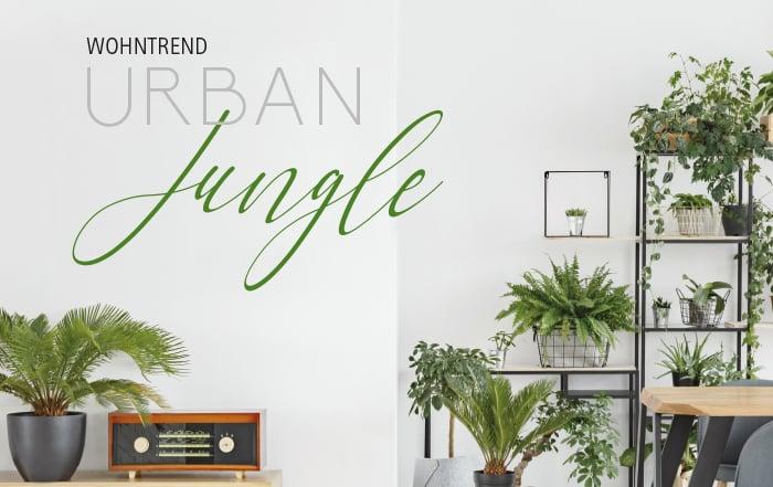 urban jungle ir linger gmbh co kg. Black Bedroom Furniture Sets. Home Design Ideas