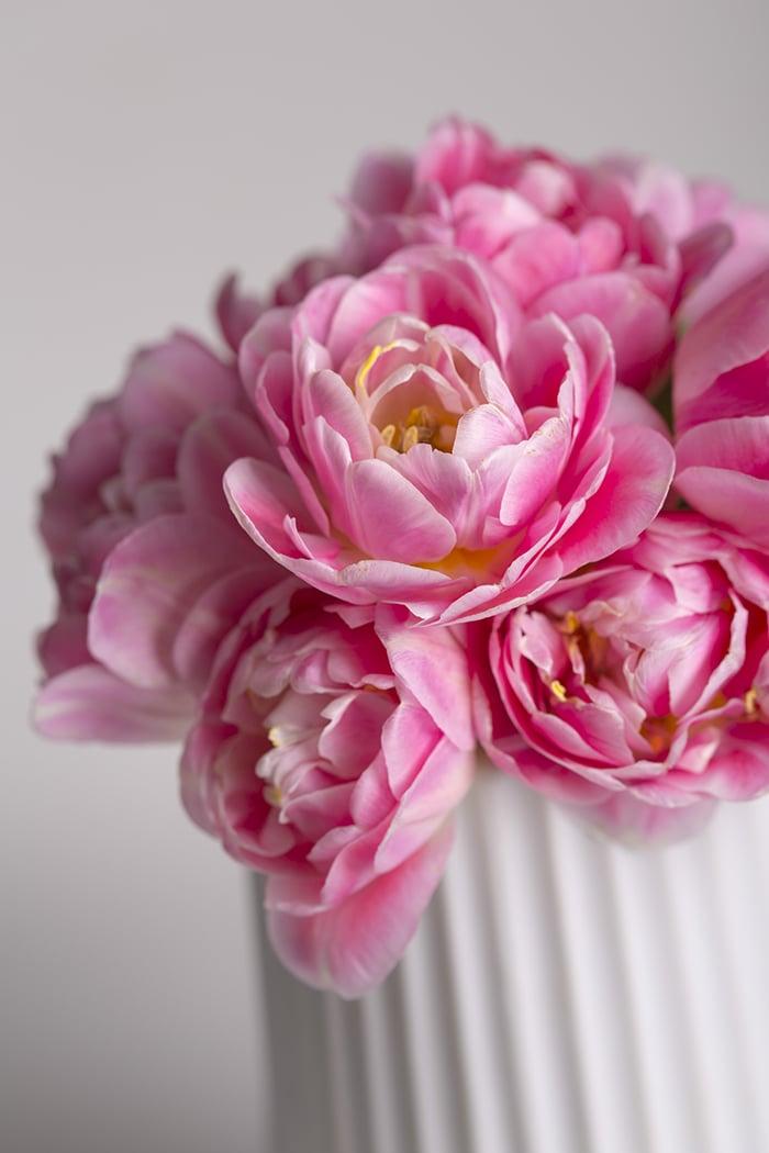 Rosa Blumen Valentinstag