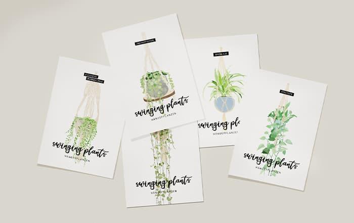swinging-plants